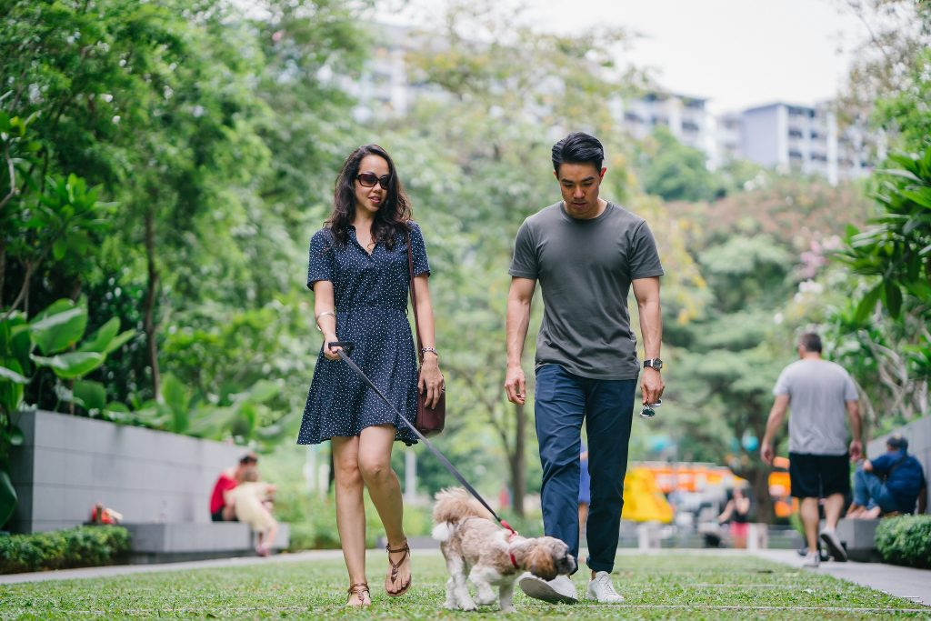 Casal caminhando com o cachorro enquanto busca realizar uma mudança de estilo de vida.