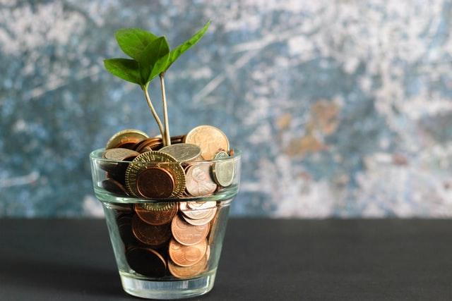 planta brotando de um vaso transperente com moedas de bronze.