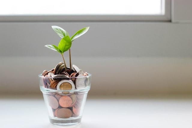 Vaso de vidro pequeno e transparente, com um broto de folhas verdes e com moedas aparecendo no lugar da terra.