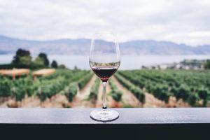 Taça de vinho transparente apoiada em uma bancada cinza. Ao fundo, uma vinícola.